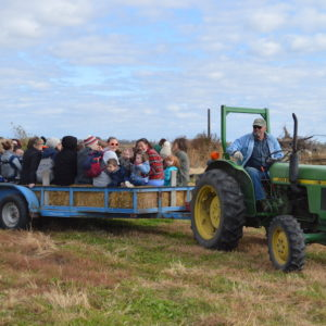 A tractor pulls a wagon full of young children and adults on a hay ride.