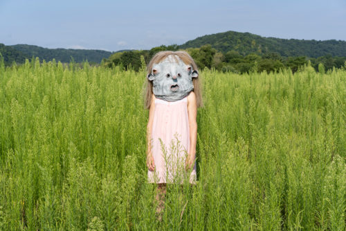 Person in a fiels with a paper mache mask
