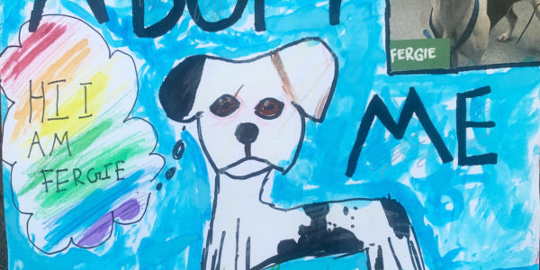 A pet adoption poster featuring an ink drawing of a dog.