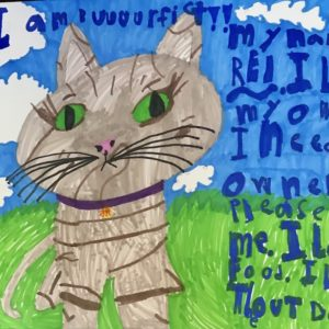 Adoption poster featuring an ink drawing of a cat named Rei.
