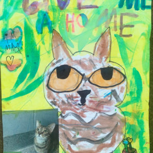 Adoption poster featuring a watercolor of a cat named May.