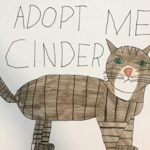 Adoption poster featuring a drawing of a striped cat.